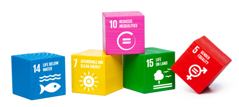 Colorful wooden blocks with SDG goals printed on the front.
